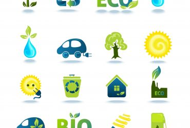 How profitable is biogas for food processing companies?