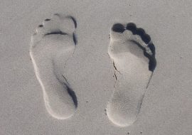 Simple ways to reduce your carbon footprint.