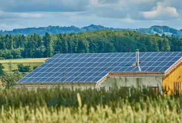 ECO WORTHY solar panels